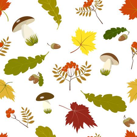 mountain ash: Pattern autumn gifts