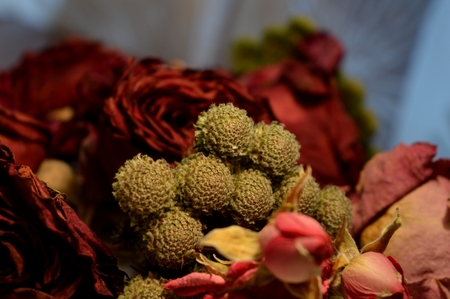 dried flower arrangement: red rose and other flowers. dried roses. bouquet of roses.