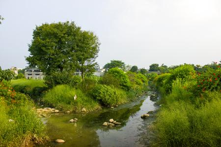 a part of the park photo