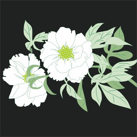 material: Flower shading material