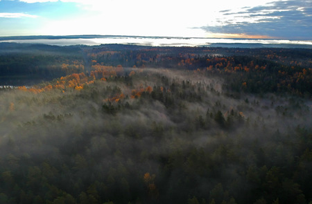 Foggy and colorful early morning aerial view