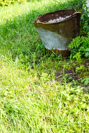 old rusty bucket in the garden on the grass