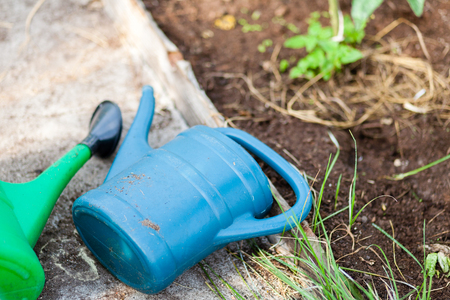 Two watering cans laying on the ground in the garden. Blue and green