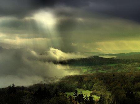 fog foggy: Path to light through a dark