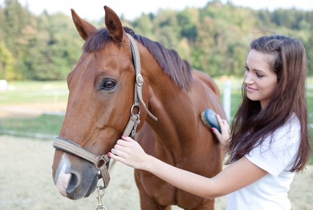 stable: Young woman brushing a beautiful horse. Selective focus.