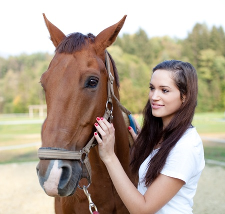 working animal: Beautiful young woman is brushing a gorgeous horse Stock Photo