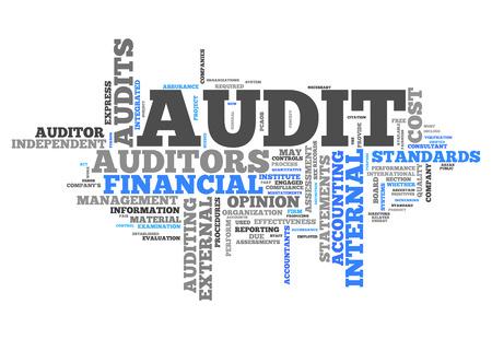 control de calidad: Nube de la palabra de Auditoría