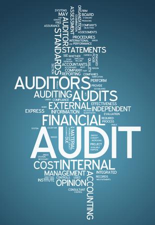 accountant: Word Cloud Audit