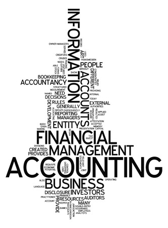 auditors: Word Cloud Accounting