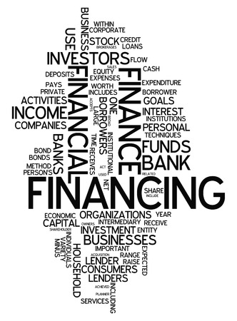 subsidy: Word Cloud with Financing wording