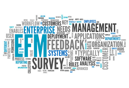 Word Cloud with Enterprise Feedback Management related wording