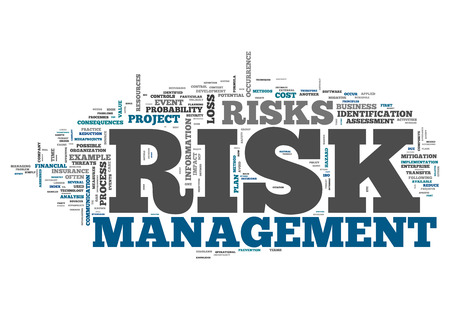 prioritization: Word Cloud with Risk Management related tags