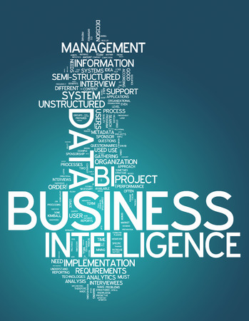 online analytical processing: Word Cloud with Business Intelligence related tags Stock Photo