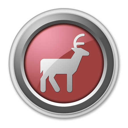 cervidae: Icon, Button, Pictogram with Deer symbol
