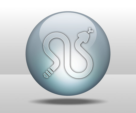 rattle snake: Icon, Button, Pictogram with Rattlesnakes symbol