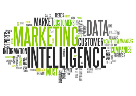 business marketing: Word Cloud with Marketing Intelligence related tags