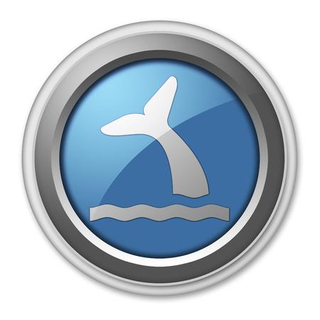 cetacea: Icon, Button, Pictogram with Whale symbol