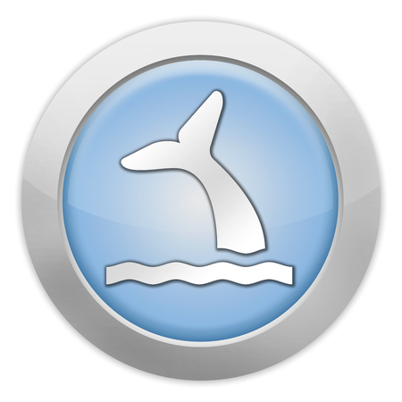 cetacea: Icon, Button, Pictogram with Whale symbol