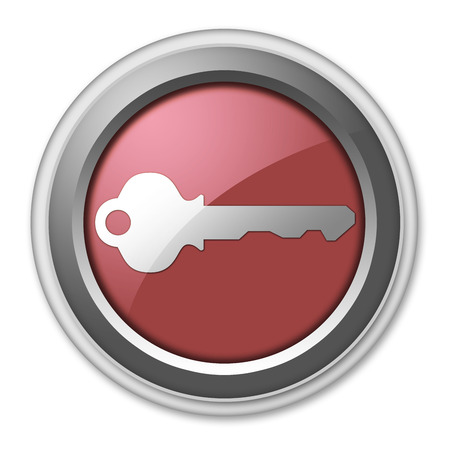 Icon, Button, Pictogram with Key symbol