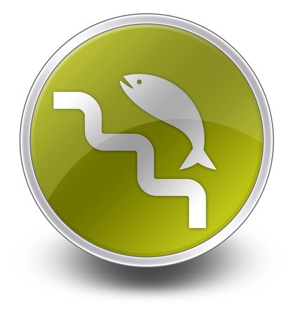 Icon, Button, Pictogram with Fish Ladder symbol