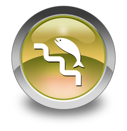 Icon, Button, Pictogram with Fish Ladder symbol 版權商用圖片 - 116264469
