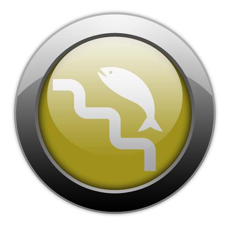 Icon, Button, Pictogram with Fish Ladder symbol 版權商用圖片 - 116264690