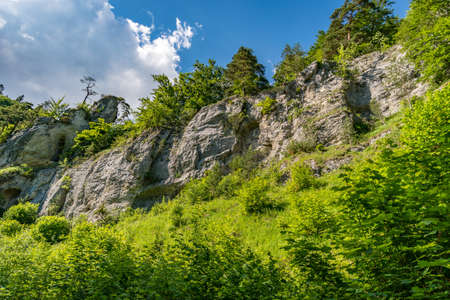 Beautiful hike in the Danube valley near Barenthal 스톡 콘텐츠