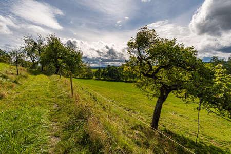 Wonderful, sunny autumn hike in Upper Swabia near Wilhelmsdorf near Lake Constance in Germany Stock fotó