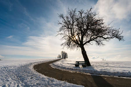 Fantastic snow-covered winter landscape near Heiligenberg on Lake Constance at the viewpoint Amalienhoehe 免版税图像