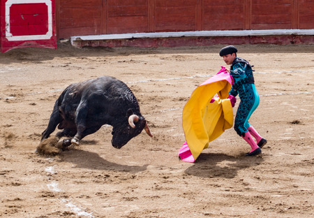 Bullfighter in ring with bull in Banos, Ecuador on Feb 15, 2015 Editorial
