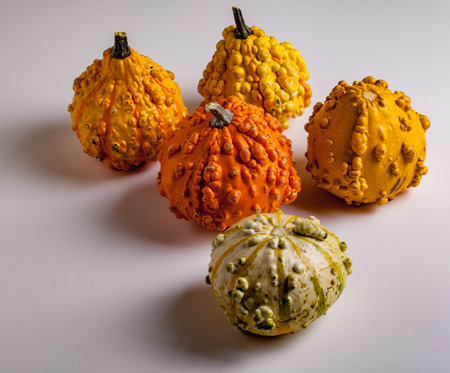 Five Decorative Gourds on a White Background