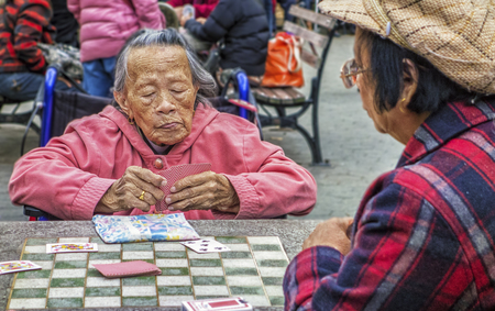 New York, New York  Nov 4, 2014: Woman plays cards in park
