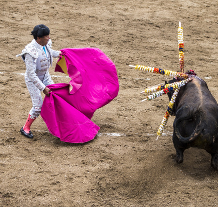 Ambato, Ecuador  Feb 15, 2015 - bullfighter on foot duels with bull during Carnaval