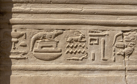Stone Hieroglyphic Carvings at Kom Ombo Temple near Luxor