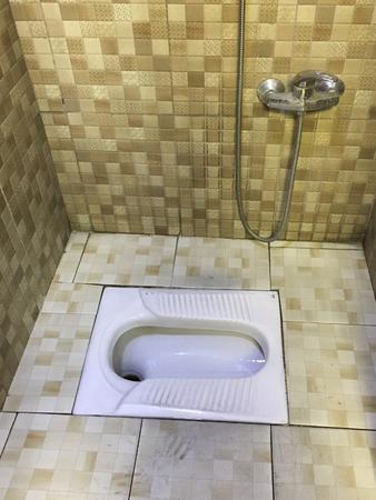 Asian Squat Toilet Shown in Tiled Restroom Stok Fotoğraf - 123501440