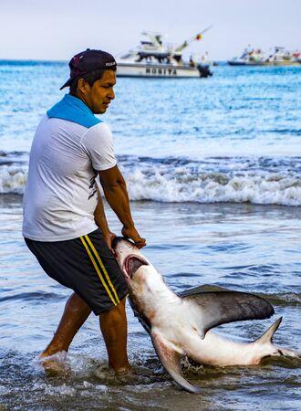Puerto Lopez, Ecuador - Aug 19, 2016: Fisherman drags a dead shark onto the beach for processing in Puerto Lopez, Ecuador Editorial