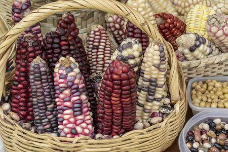 Indian corn in basket at a market Banco de Imagens