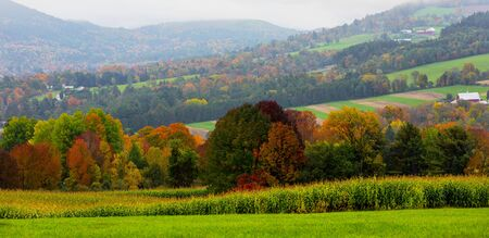 Rolling farm hills are broken by swaths of trees in full Autumn Color in Vermont