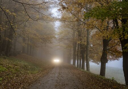 Car headlights can be seem coming along the road on a misty day in late Autumn as the trees begin to lose their leaves in Vermont