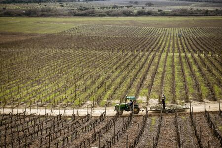 Santiago, Chile - 2019-07-13 - Tractor drives down dirt road in vineyard in winter.