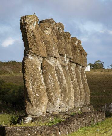 Moai on Easter Island at Ahu Akivi. Imagens