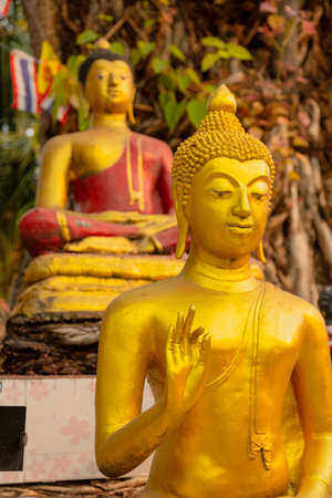 Golden Buddha Statues in Multiple Various Poses. Foto de archivo