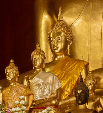 Golden Buddha Statues in Various Poses.