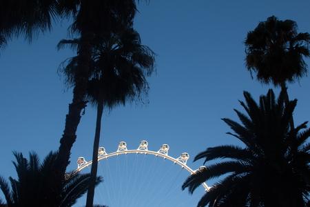 ferriswheel: highest ferriswheel in the world