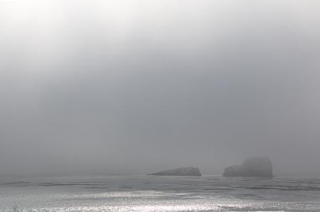 안개 베일에 덮여 바위와 어두운 바다