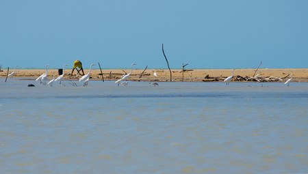 indigene: Traditional fishing landscape in the Colombian Guajira. Stock Photo