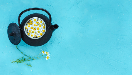 Fresh flowers and camomile plants in teapot on blue background. Top view.