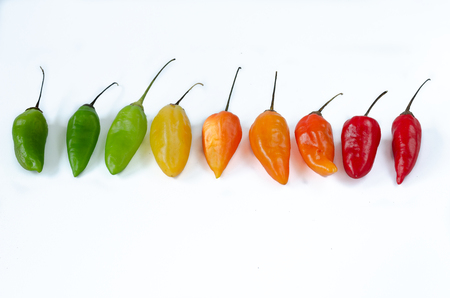 Chilies of various kind in row on white background. Pepper. Chili pepper. 写真素材