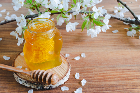Honey jar on slice of birch wood with honeycomb and honey dipper on wooden background with cherry blossoms.