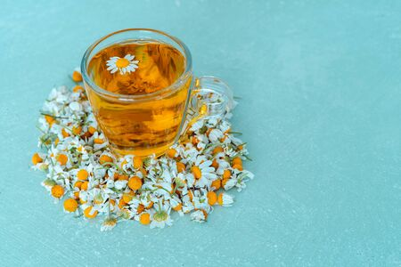 Cup of chamomile with flowers on blue background. Copy space